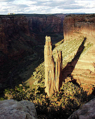 Photograph - Spider Rock 7  by Jeff Brunton