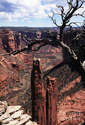 Roaring Red - Spider Rock by Thomas R Fletcher