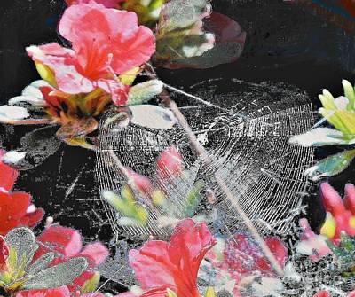 Photograph - Spider With Azaleas  by Janette Boyd