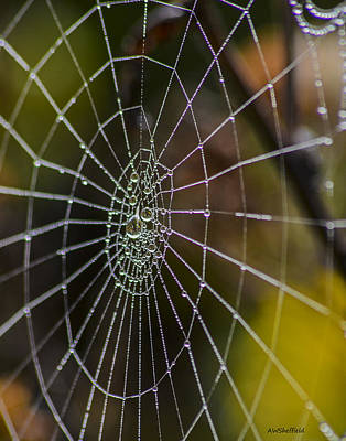 Photograph - Spiderweb With Dew 3 - Reflections by Allen Sheffield