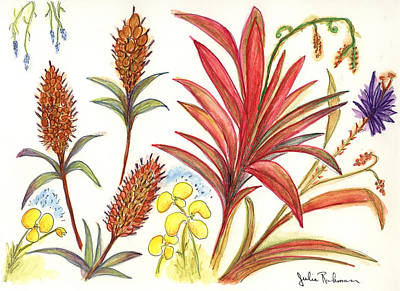 Spiky Florida Flowers Art Print by Julie Richman