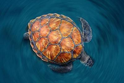 Sea Turtles Photograph - Spin Turtle by Sergi Garcia