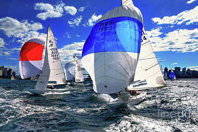 Photograph - Spinnakers And Sails By Kaye Menner by Kaye Menner