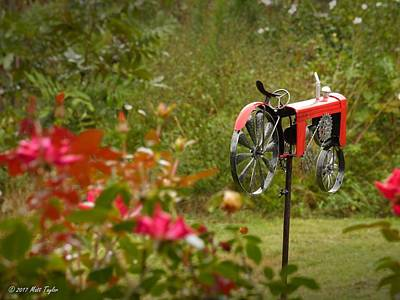 Photograph - Spinnin' Wheels And Swayin' Roses by Matt Taylor