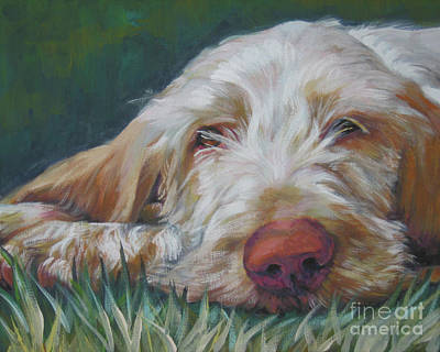 Spinone Italiano Orange Art Print