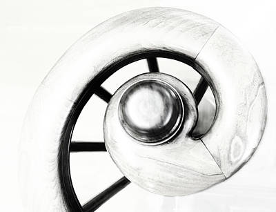 Photograph - Spiral -black And White Photograph by Ann Powell