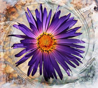 Digital Art - Spiral Bloom by Gina Geldbach-Hall