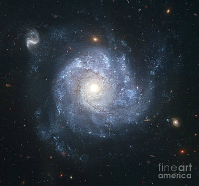 Impressionist Landscapes - Spiral Galaxy Ngc 1309 by Stocktrek Images