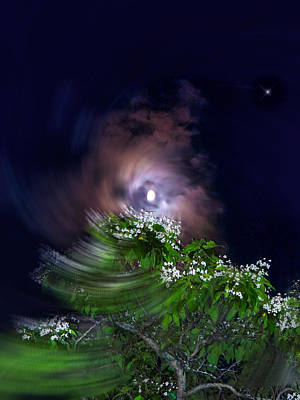 Photograph - Spiral Lilac Moon by Glenn Feron