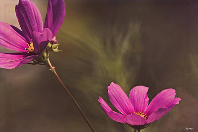 Photograph - Spirit Among The Flowers by Skip Tribby