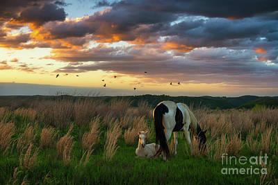 Photograph - Spirit Of Kentucky by Anthony Heflin