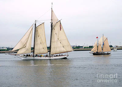 Photograph - Spirit Of South Carolina And Schooner Alert  by Janice Drew