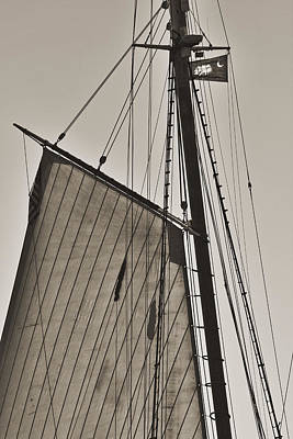 Historic Schooner Photograph - Spirit Of South Carolina Schooner Sailboat Sail by Dustin K Ryan