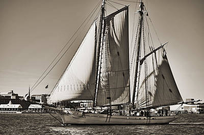 Spirit Of South Carolina Schooner Sailboat Sepia Toned Original