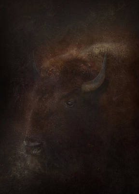 Photograph - Spirit Of The Buffalo by Ray Van Gundy