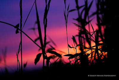 Art Print featuring the photograph Spirit Of The Morning by Everett Houser