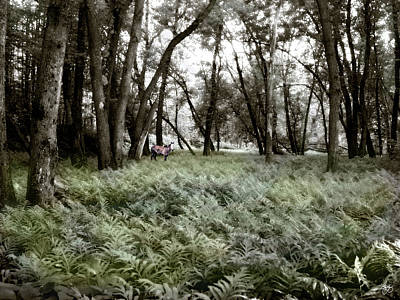 Photograph - Spirit Pony In A Floodplain Fernwood by Wayne King