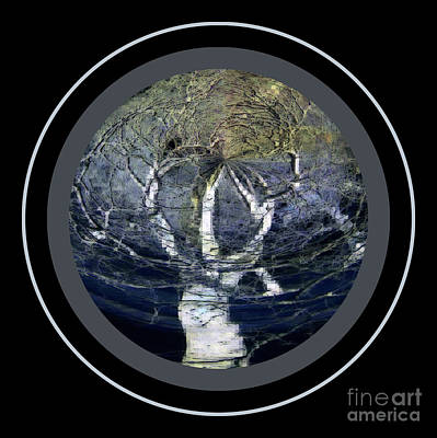 Photograph - Spirit Tree by Jodie Marie Anne Richardson Traugott          aka jm-ART