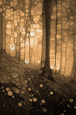 Digital Art - Spirits In The Forest by Tara Turner