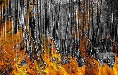 Spirits Of The Firestorm Art Print by Diane C Nicholson