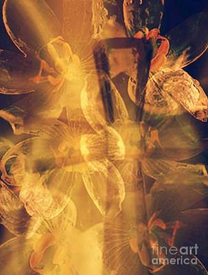Digital Art - Spiritual Healing by Maria Urso