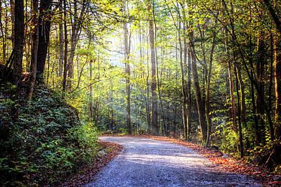 Photograph - Spiritual Light Through The Trees by Debra and Dave Vanderlaan