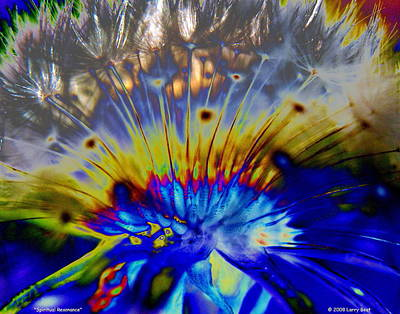 Photograph - Spiritual Resonance by Larry Beat