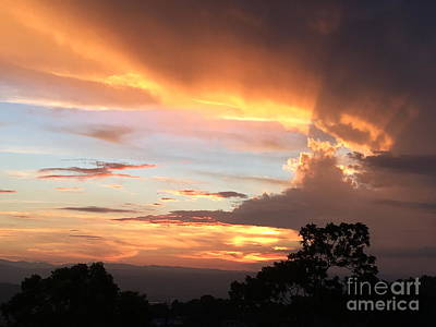 Photograph - Spiritual Sunset by The Art of Alice Terrill