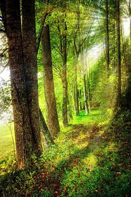 Photograph - Spiritual Walk With Nature by Debra and Dave Vanderlaan