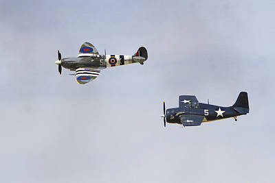 Spitfire And Wildcat Art Print by Shoal Hollingsworth