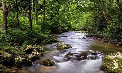 Spivey Creek Art Print by Gary Migues