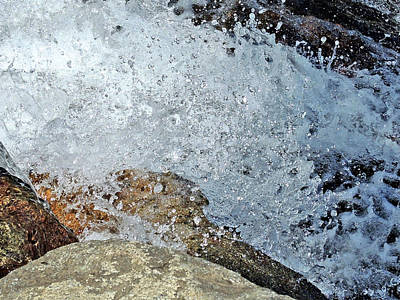 Photograph - Splash by Lynda Lehmann