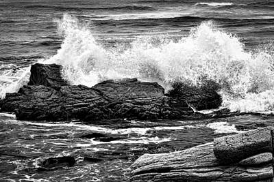 Photograph - Splash by Maria Coulson
