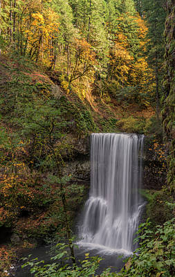 State Parks In Oregon Photograph - Splash Of Autumn by Loree Johnson