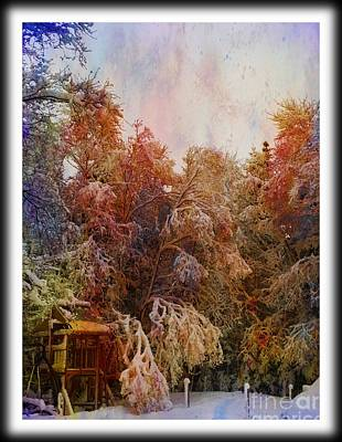 Photograph - Splash Of Icy Color by Barbara Griffin