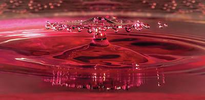 By Jackie Photograph - Splash Of Rose by Jackie Sajewski