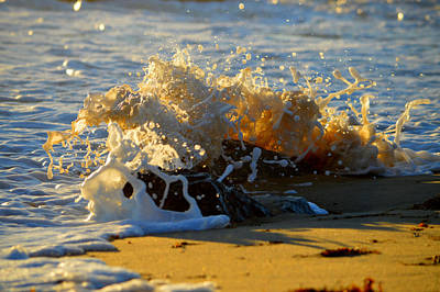 Photograph - Splash Of Summer - Cape Cod National Seashore by Dianne Cowen