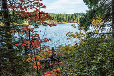 Photograph - Splashes Of Color Around Clear Lake by Belinda Greb