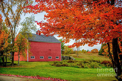 Photograph - Splendid Red Barn In The Fall by Alana Ranney