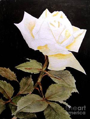 Painting - Splender In White by Carol Grimes