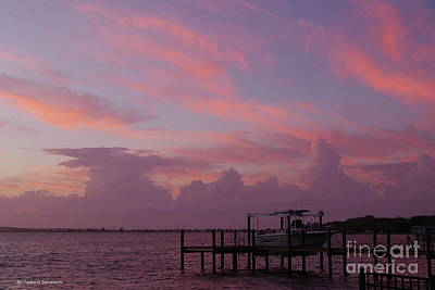 Photograph - Splendid Florida Sunset by Tannis Baldwin