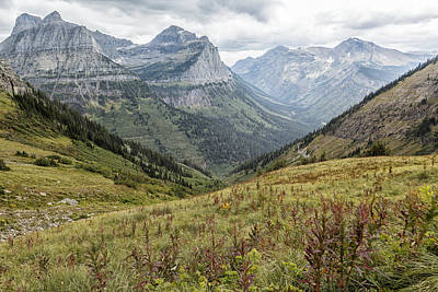 Photograph - Splendor From Highline Trail - Glacier by Belinda Greb