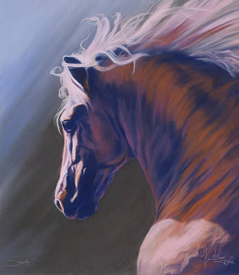 Pastel - Splendor by Kim McElroy