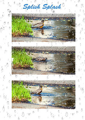 Photograph - Splish Splash by Cathy Kovarik