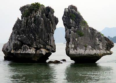 Photograph - Split Island by Randall Weidner