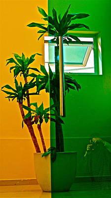 Photograph - Split Palm by Darren Cole Butcher