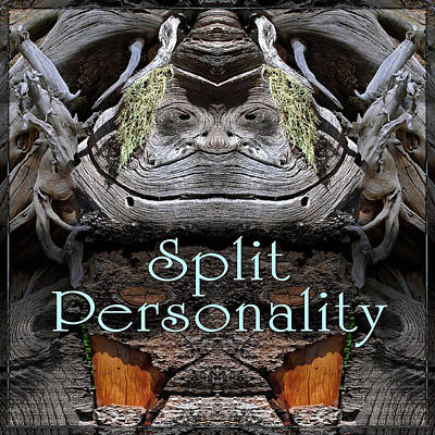 Digital Art - Split Personality by Becky Titus