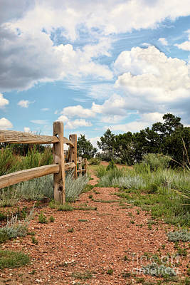 Photograph - Split Rail Fence by Lawrence Burry