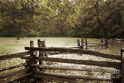 Split Rail Fence Photograph - Split Rail Fence by Tom Gari Gallery-Three-Photography