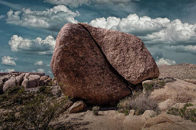 Art Print featuring the photograph Split Rock In Joshua Tree National Park by Randall Nyhof